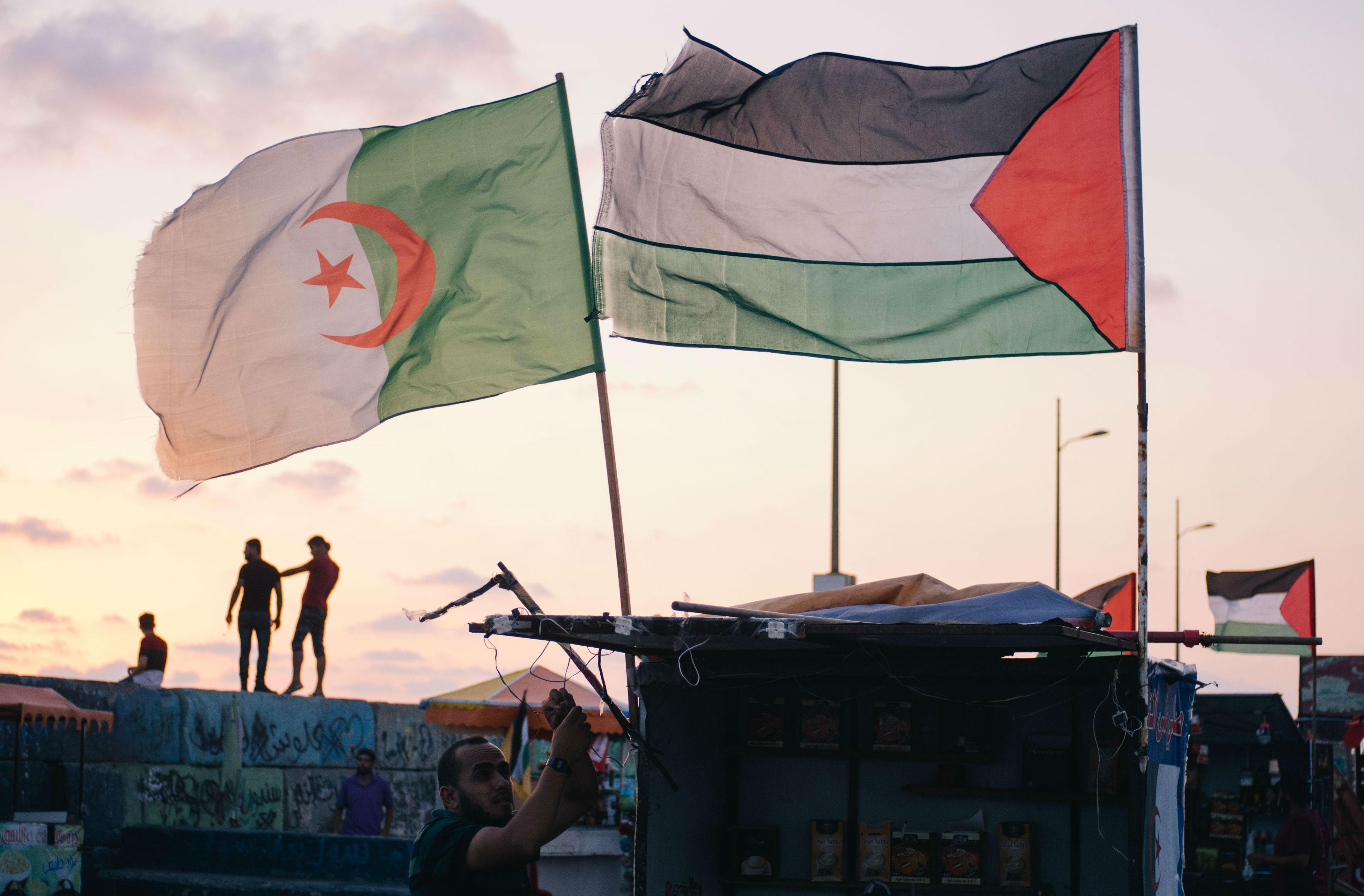 الجزائري هو الفلسطيني القديم!